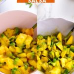 Mango Salsa Recipe (Two Ways)